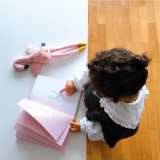 The Flamingo's ABC Book